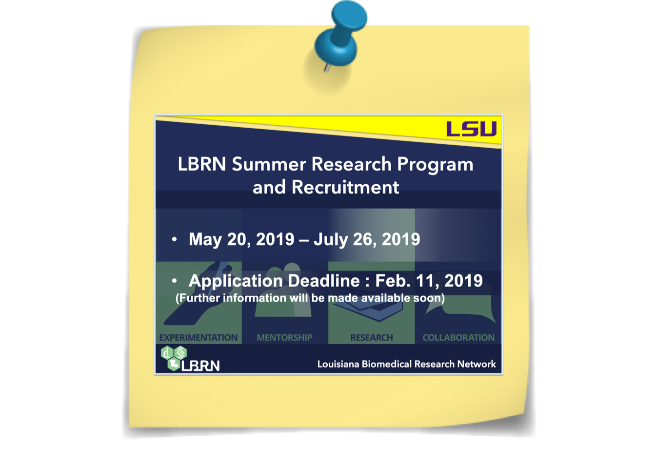 LBRN Summer Research Program Application 2019