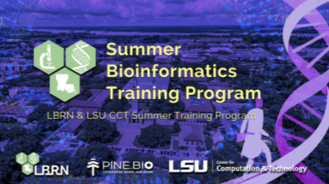 2019 LBRN Pine Biotech Summer Bioinformatics Program